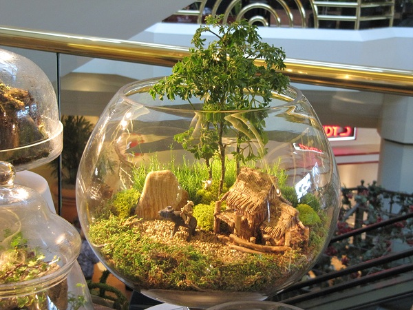 Beautifully designed terrariums were also for sale at the Spring Garden Show.