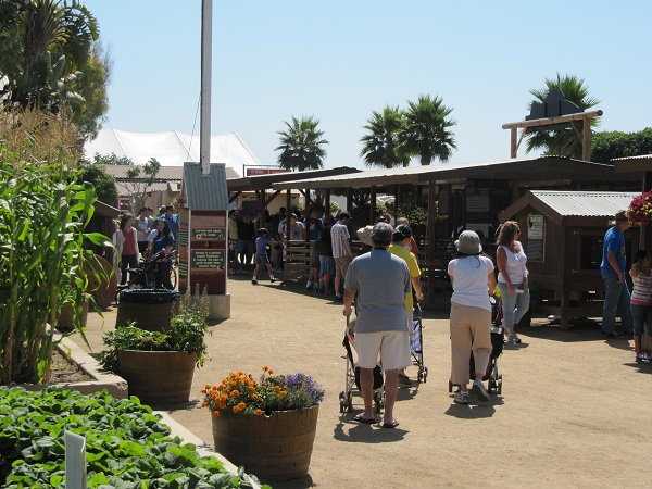 The farm area is always crowded with interested city-dwellers.