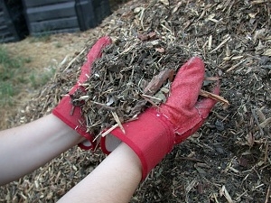 Mulch made of wood chips