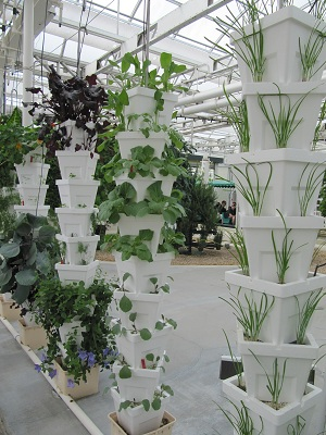 Stacked styrofoam recycled plant containers
