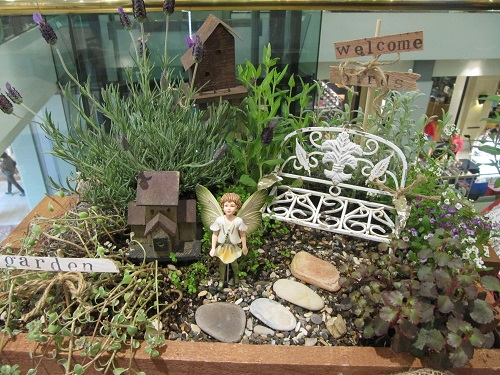Fairy Garden Display
