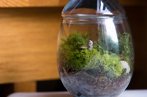 Terrarium with tiny woman figurine