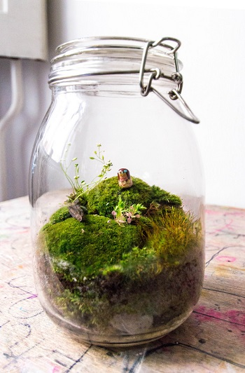 Jar terrarium with hills and figurine