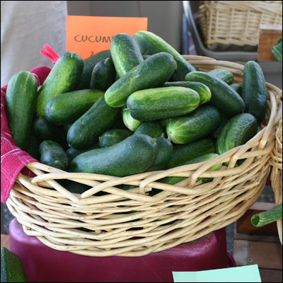 Cucumbers at a Farmers Market